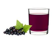 Питье смородины в стекле с смородинами ягод Стоковые Фотографии RF