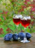 Питье сливы в стеклянной рюмке Стоковые Фото