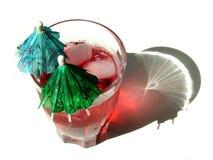 питье тропическое Стоковая Фотография