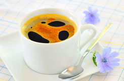 питье цикория горячее Стоковое Фото