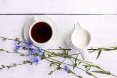 Питье цикория чая чашки кофе с цветком цикория Стоковые Изображения RF
