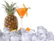 питье экзотическое Стоковая Фотография
