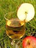 питье яблока Стоковые Изображения RF