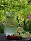 Питье Elderflower Стоковая Фотография RF