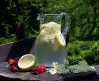 Питье Elderflower Стоковые Фото