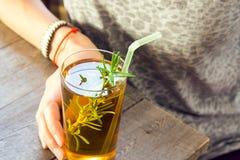 Питье Kombucha девушки женщины Стоковая Фотография RF