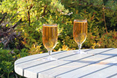 2 питья в солнечности лета. Стоковое Изображение