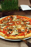 Пицца и комплект специй Стоковые Фотографии RF