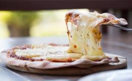 Пицца сыра стоковые изображения rf