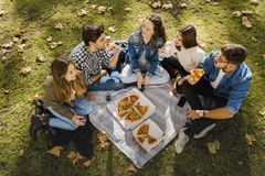 Пицца с друзьями стоковое фото