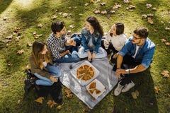 Пицца с друзьями стоковое изображение