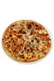 Пицца с сыром и champignons Стоковое Фото