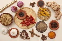 Пищевые ингредиенты Rajasthani Стоковое Изображение RF