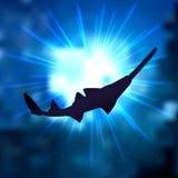 Пилорылые Стоковые Фотографии RF