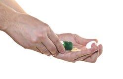 Пилюльки в руке изолированной на белой предпосылке Стоковые Изображения RF