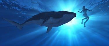 Плавание с китом бесплатная иллюстрация