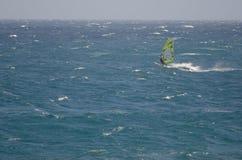Плавание Windsurfer в море Стоковое Изображение
