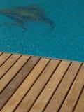 Плавательный бассеин Стоковые Изображения