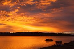Плавать в озеро Стоковые Фото