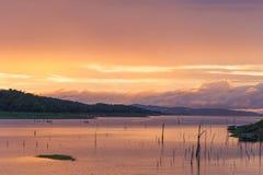 Плавать в озеро Стоковые Изображения RF