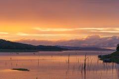 Плавать в озеро Стоковые Изображения