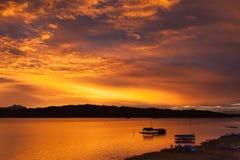 Плавать в озеро Стоковая Фотография RF