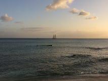 Плавать в тропиках стоковые изображения