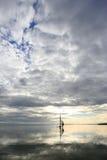 Плавать к Sun Стоковые Изображения