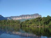 Плавать река в венесуэльской Амазонке стоковые изображения rf