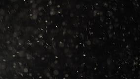 Плавая естественные пятнышки сверкают на черной предпосылке студии акции видеоматериалы