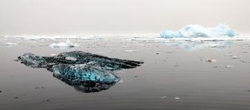 Плавая лед в Гренландии Стоковое Изображение