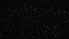 Плавая небольшие пятнышки сверкнают на черной предпосылке студии сток-видео