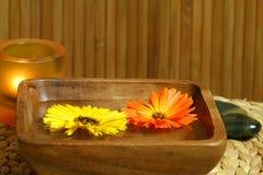 плавая ноготк цветков Стоковые Фотографии RF
