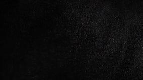 Плавая различные с определенными размерами частицки пыли летают на черную предпосылку сток-видео