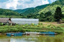 Плавая сельское хозяйство рыб в прудах и горах стоковая фотография
