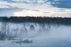 плавая туман стоковое изображение rf