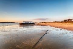Залив Буша ежевичника в Дорсете стоковые изображения rf