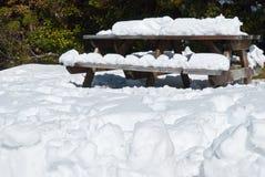 плавя весна снежка Стоковые Изображения