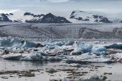 Плавя язык айсбергов сезона лета ледника Breidamerkurjokull голубых стоковое фото rf