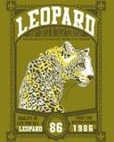 плакат леопарда Стоковые Изображения RF