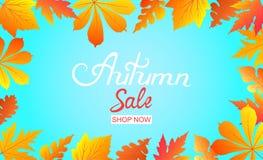 Плакат продажи осени с падая листьями Надпись руки Иллюстрация вектора