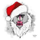Плакат рождества с изображением портрета Mandrill в шляпе ` s Санты также вектор иллюстрации притяжки corel Стоковые Фотографии RF