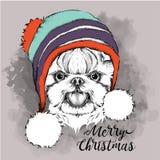 Плакат рождества с портретом собаки изображения в шляпе зимы также вектор иллюстрации притяжки corel Стоковое Изображение