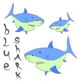 Плакат сини акулы Стоковое Изображение RF