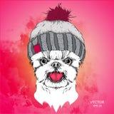 Плакат с портретом собаки изображения в шляпе зимы также вектор иллюстрации притяжки corel Стоковые Изображения