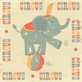 Плакат цирка год сбора винограда Стоковые Фотографии RF