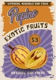 Плакат экзотического плода Pepino ретро бесплатная иллюстрация