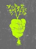 плакат экологичности Стоковое фото RF