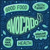 Плакат Doodle с литерностью овощи шнура еды cauliflowers морковей фасолей естественные com алтернативы colldet10709 colldet10711  бесплатная иллюстрация