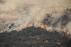 Пламена возвышаясь на горном склоне в лесном пожаре Калифорнии Стоковая Фотография RF